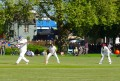 LonFieldsCrick: London Fields CC v Sovereign (fielding) 030514 © David Altheer